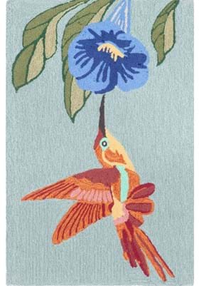 Trans Ocean Hummingbird 152703 Sky