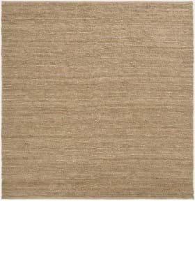 Surya COT-1931 Wheat