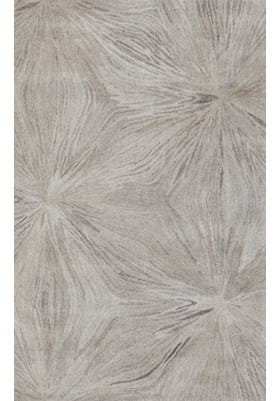 Dynamic Rugs 7802 717 Grey Ivory